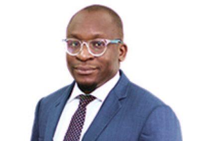 Bambo Ibidapo-Obe
