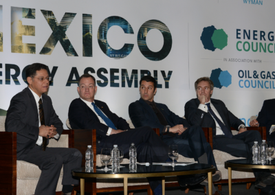 Dr. Cesar Emiliano Hernández Ochoa moderating Power Panel at Mexico Assembly