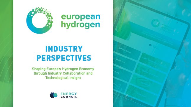 EHC Industry perspectives report