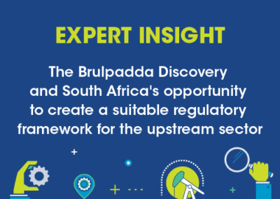 The Brulpadda Discovery