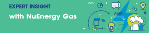 NuEnergy Gas