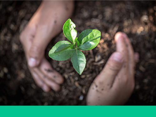 What does a comprehensive ESG programme look like; identifying the possible range of initiatives that work for your business.